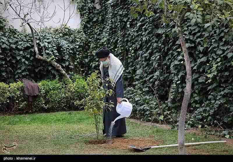 خامنه ای درختی می کارد، پاپ از عراق دیدار می کند